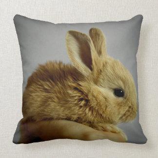 Pequeño conejo lindo a disposición cojin