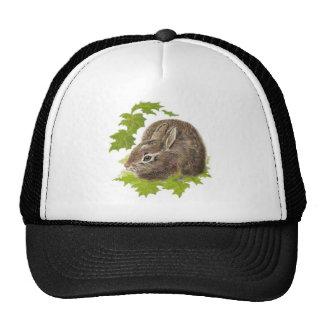 Pequeño conejo lindo conejito naturaleza animal gorro de camionero