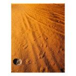 Pequeño desierto flyer personalizado