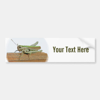 Pequeño dibujo animado verde del saltamontes etiqueta de parachoque