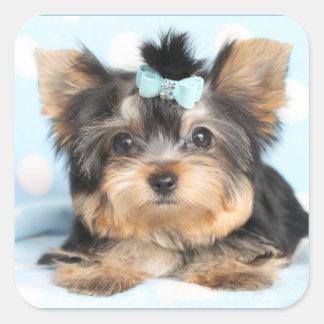Pequeño diseño minúsculo lindo del perrito de pegatina cuadrada