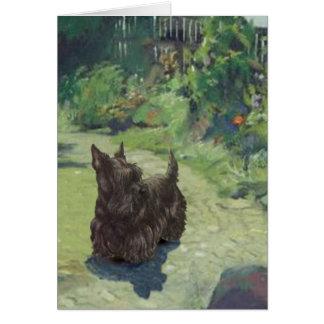 Pequeño escocés en el jardín tarjetas
