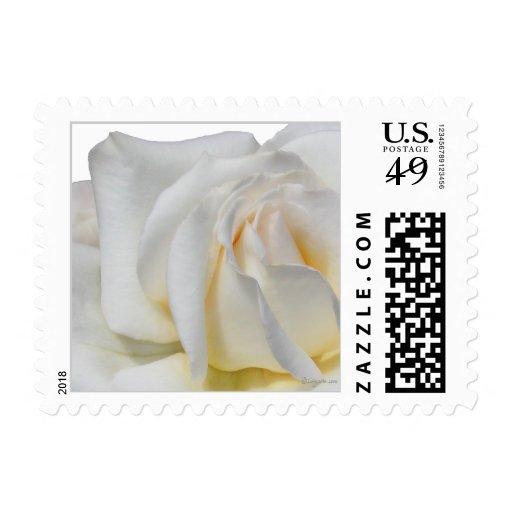 Pequeño franqueo blanco de Swirly y amarillo pálid