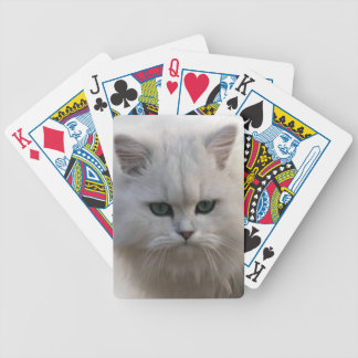 Pequeño gatito de observación baraja