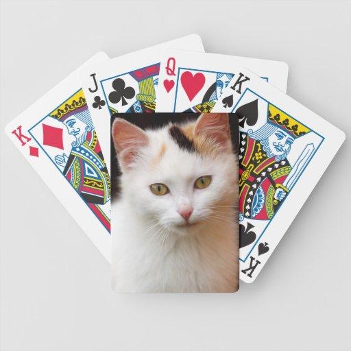 Pequeño gatito lindo cartas de juego