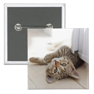 Pequeño gatito lindo pin cuadrado
