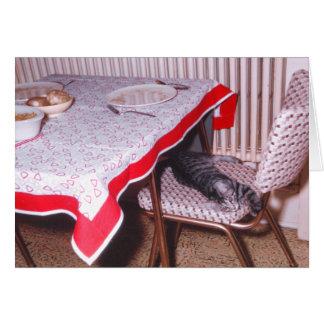 Pequeño gatito lindo que duerme en una silla de la