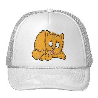 Pequeño gatito que lame su cola gorras