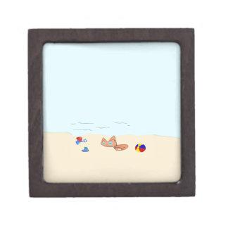 Pequeño gato en la playa cajas de recuerdo de calidad