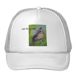 Pequeño gorra del aceo de Srta Cardinal