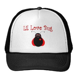 Pequeño gorra lindo de la mariquita del insecto