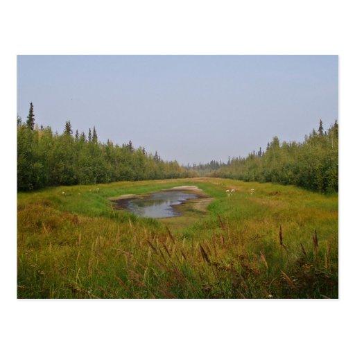 Pequeño lago ocultado en los planos postales