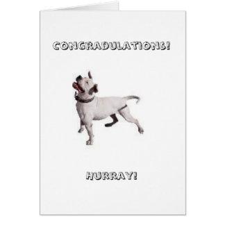 ¡pequeño logotipo Congradulations ¡Hurray Felicitación