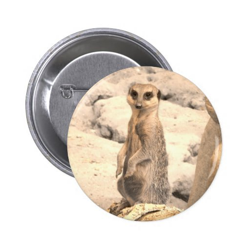 Pequeño Meerkat lindo en guardia Pin