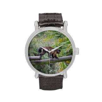 pequeño mono que corre a través de la verja reloj de mano