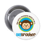 Pequeño mono que va a ser un hermano mayor pin