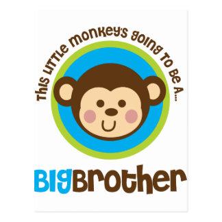 Pequeño mono que va a ser un hermano mayor tarjetas postales