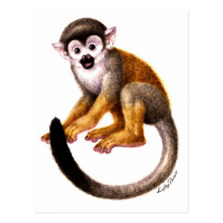 Pequeño mono tarjeta postal