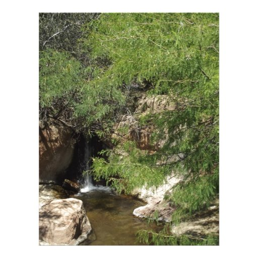 Pequeño oasis plantillas de membrete