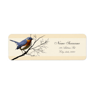 Pequeño pájaro azul etiquetas del remite etiqueta de remite