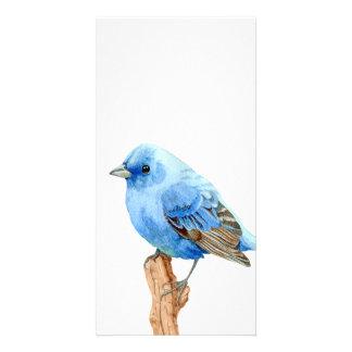 Pequeño pájaro azul tarjeta personal con foto