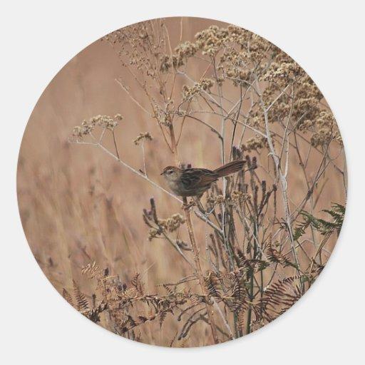 Pequeño pájaro camuflado en invierno etiqueta redonda