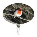 pequeño pájaro del redbreast del petirrojo que se  figura para tarta