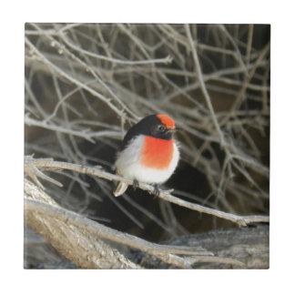 pequeño pájaro del redbreast del petirrojo que se  tejas  ceramicas