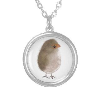 Pequeño pájaro divertido joyería