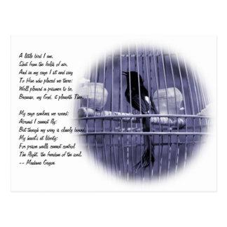 Pequeño pájaro en poema de la jaula postales