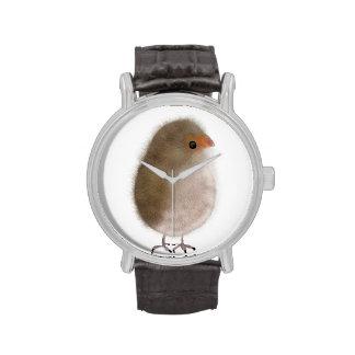 ¡Pequeño pájaro en un reloj