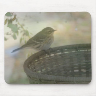 pequeño pájaro tapete de raton