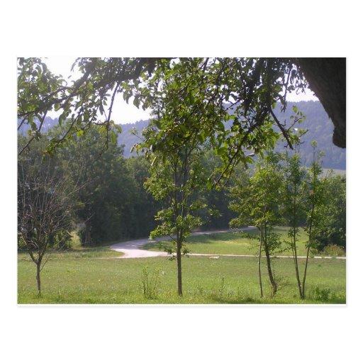 pequeño paseo en el (2) verde postales