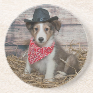 Pequeño perrito lindo del vaquero posavasos de arenisca
