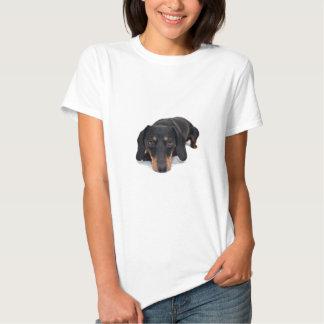 Pequeño perro del Dachshund Poleras
