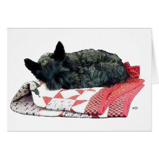 Pequeño perro del escocés el dormir tarjeta de felicitación