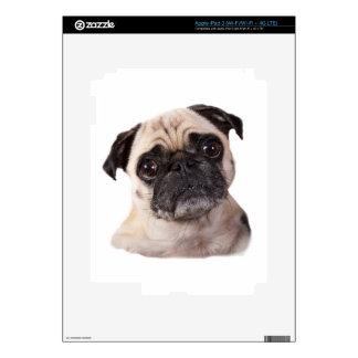 pequeño perro lindo del barro amasado pegatinas skins para iPad 3