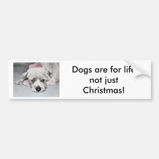 Pequeño perro triste del navidad pegatina para auto