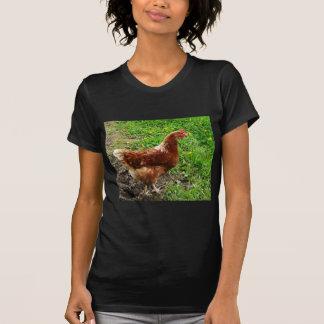 Pequeño pollo rojo - capa libre del huevo de la ga camisetas