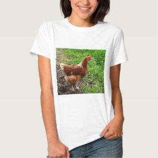 Pequeño pollo rojo - capa libre del huevo de la remera