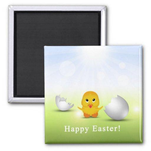 Pequeño polluelo lindo de Pascua - imán