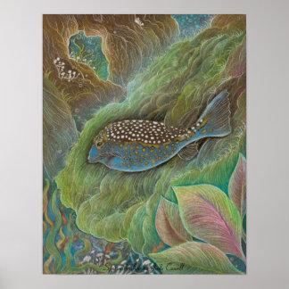 Pequeño poster manchado del boxfish