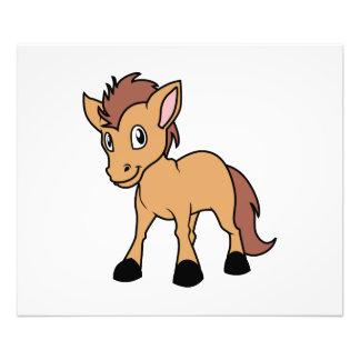 Pequeño potro del potro del caballo del potro fotografías