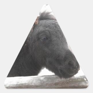 Pequeño potro pegatina triangular