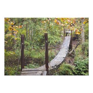 Pequeño puente de colgante, herencia nacional del  fotografía