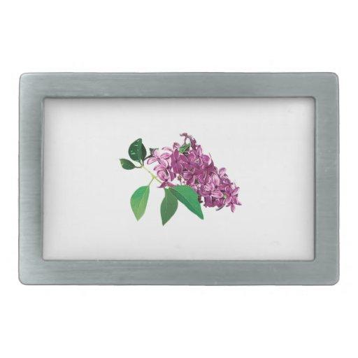 Pequeño racimo de lilas rosadas hebillas de cinturón rectangulares