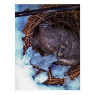 pequeño ratón lindo en la nieve postal