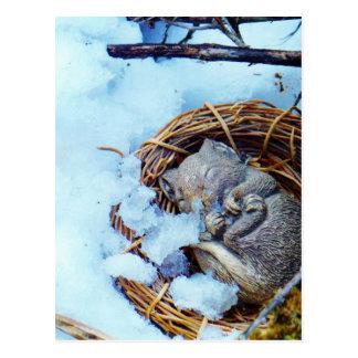 Pequeño ratón que duerme en la nieve tarjeta postal