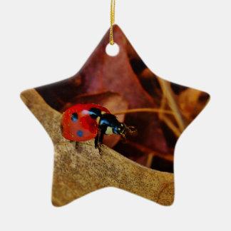 pequeño regalo conocido personalizado traje lindo adorno navideño de cerámica en forma de estrella