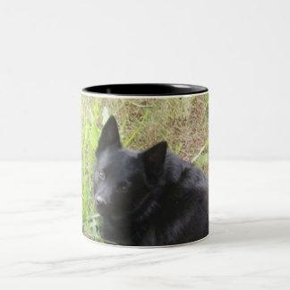 pequeño zorro taza de café